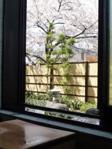 4月花見お風呂から2